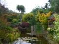 Featured Garden2